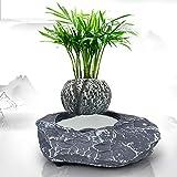 LIGHT Maceta de bonsái Flotante - Macetas de Flores de Aire de levitación con suspensión magnética - Bonsai de levitación de diseño Creativo - Decoraciones para el hogar