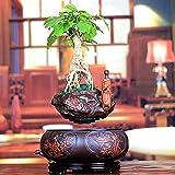 Maceta flotante de bonsai - Macetas de flores de aire de levitación con suspensión magnética - Bonsai de levitación de diseño creativo - Decoraciones de oficina en el hogar - Regalo divertido, Bonsai