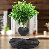GOHHK portátil levitante maceta flotante Pot Aire Bonsai magnética Suspensión Planta Creative Design levitación Bonsai - Home Office Decoraciones - regalo de la diversión Negro-trompeta