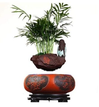 bonsai que vuela como centro de decoración