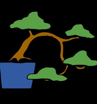 bonsai estilo semicascada