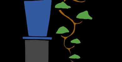 bonsai estilo cascada