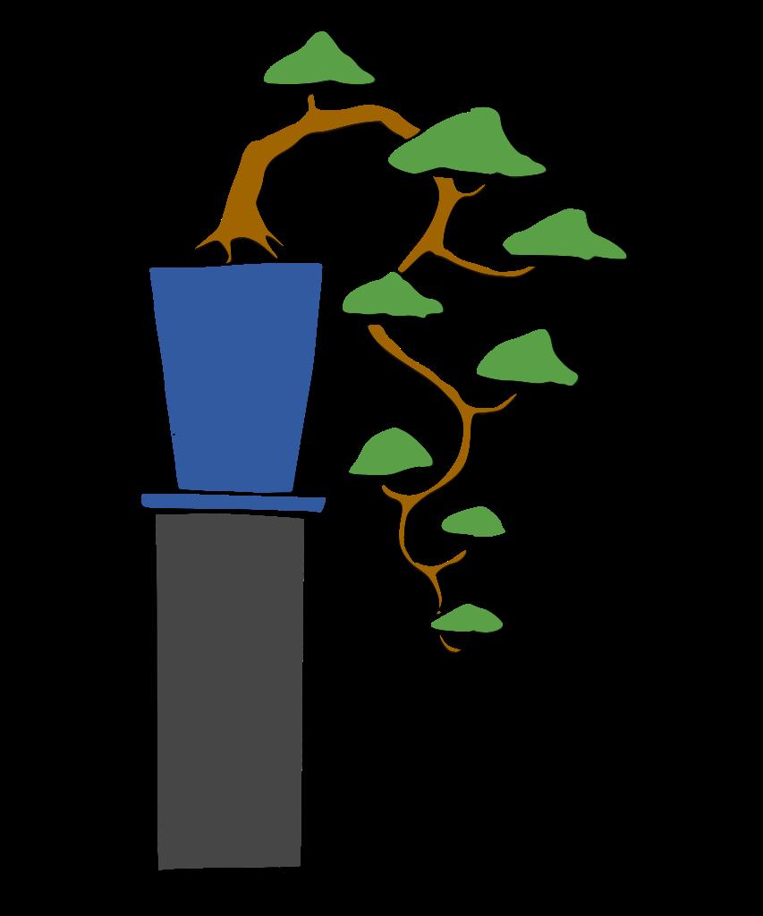 dibujo bonsai cascada kengai