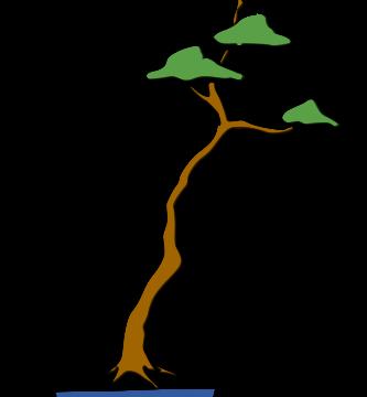 bonsai literati