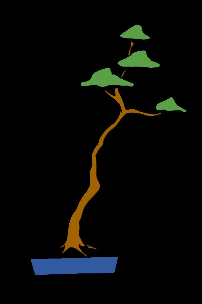bonsai estilo literati bunjingi