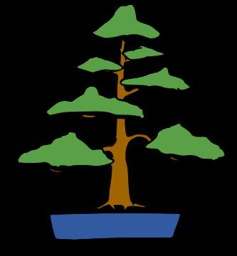 bonsai chokkan estilo vertical formal