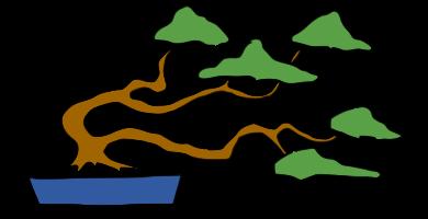 bonsai barrido por el viento