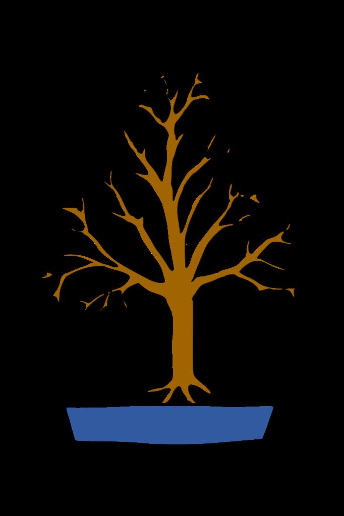 bonsai estilo paraguas, estilo escoba, hokidachi