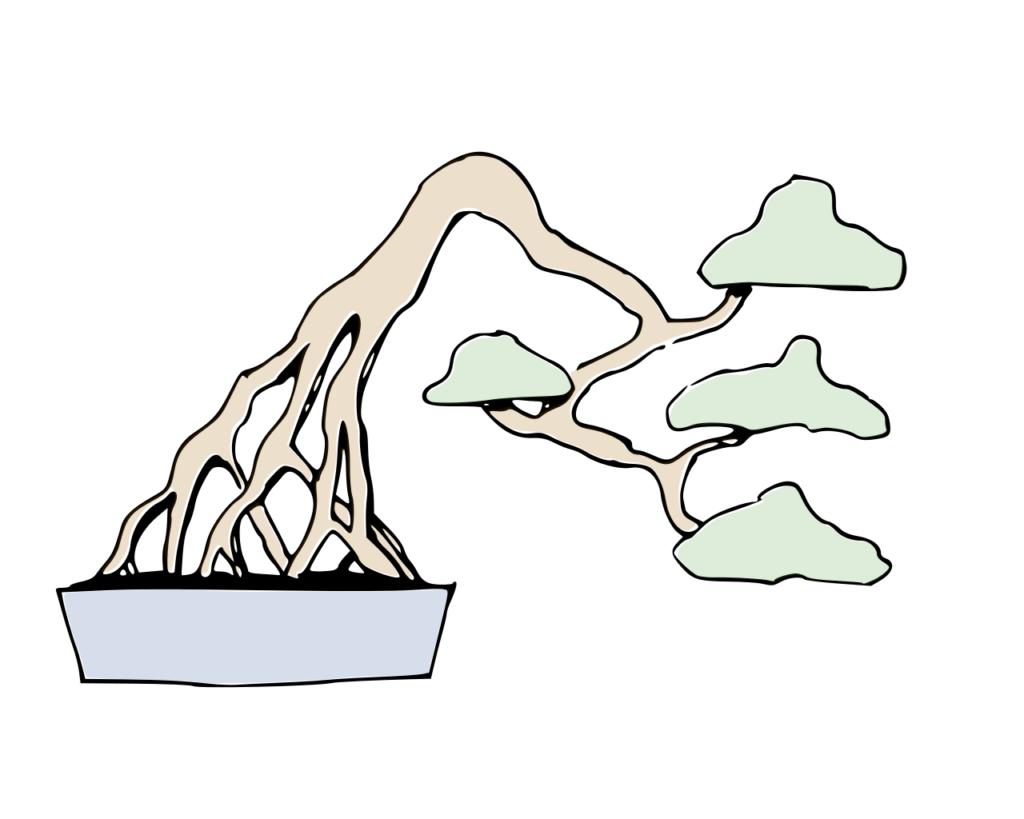 Dibujo bonsái estilo raíces expuestas neagari