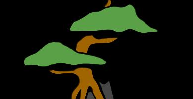 bonsái sekijoju