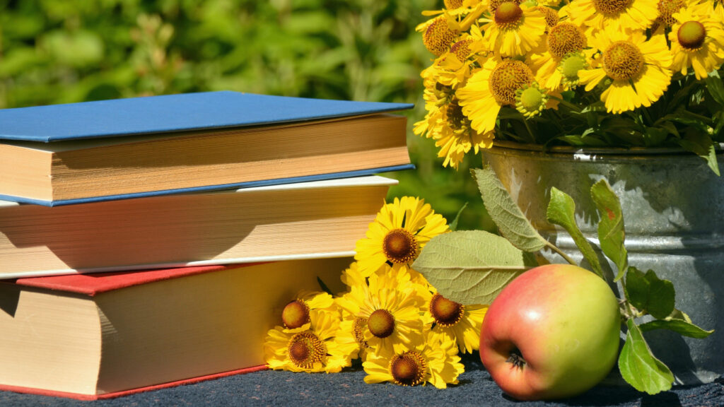 Regalar libros sobre bonsáis para aprender a cuidarlos desde cero